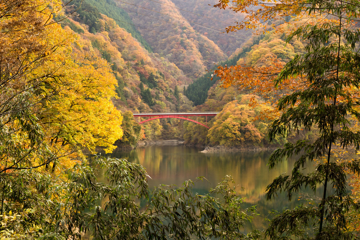 Things to do in Tokyo: Vibrant Lake Okutama
