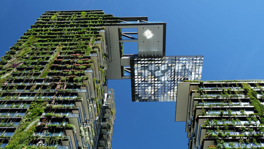 Sydney city tour: Vertical Gardens