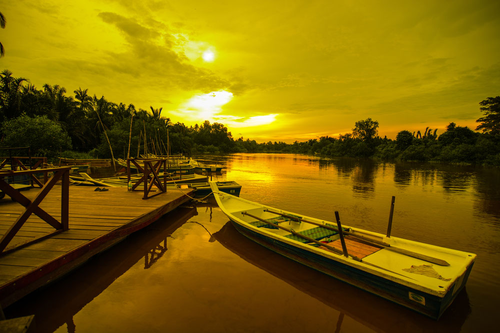 Kampung Kuantan Fireflies: Sampan boat